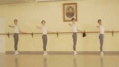 ロシアバレエの王子たち